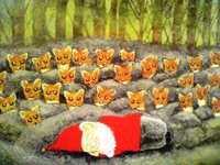 日本語絵本 立松 和平、エバ・ハッカライネン『森のトントゥ』