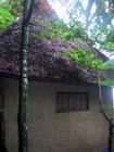 華厳寺 鈴虫寺